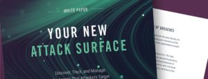 Your New Internet Attack Surface - Expanse
